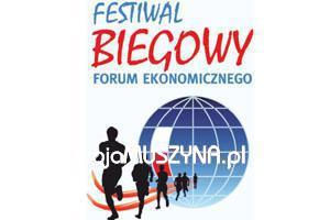 Festiwal Biegowy Forum Ekonomicznego 2014