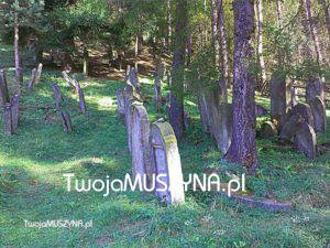 Cmentarz żydowski w Muszynie