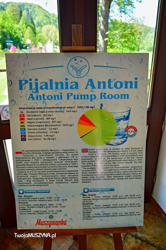 Pijalnia Antoni w Muszynie - wnętrze
