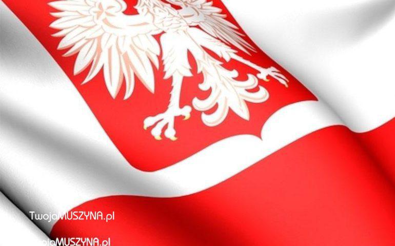 Polska flaga i godło