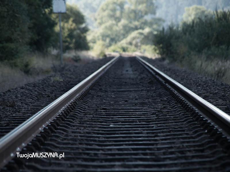 Torowisko - pociąg