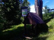 Mofeta w Złockiem