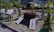 Ogrody Biblijne w Muszynie