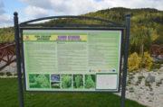 Ogrody sensoryczne w Muszynie jesienią