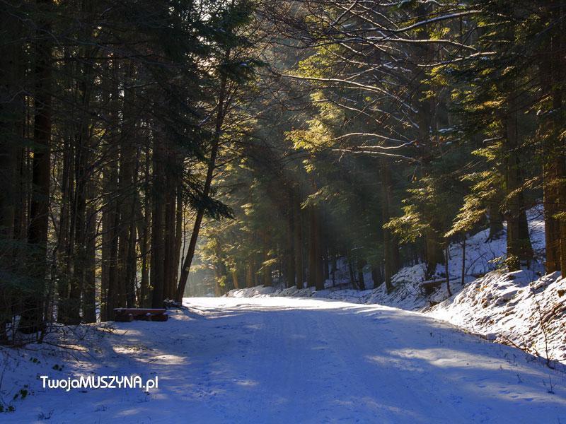 Droga w grach zimą