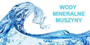 Muszyna wody mineralne