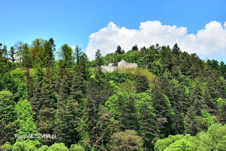 Atrakcje dla rodzin z dziećmi - ruiny zamku w Muszynie - widok z Zapopradzia