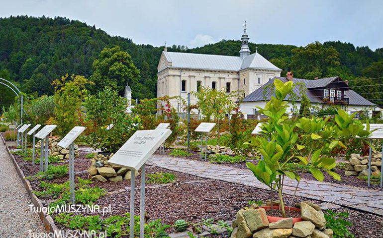 Ogrody Biblijne w Muszynie - zdjęcie