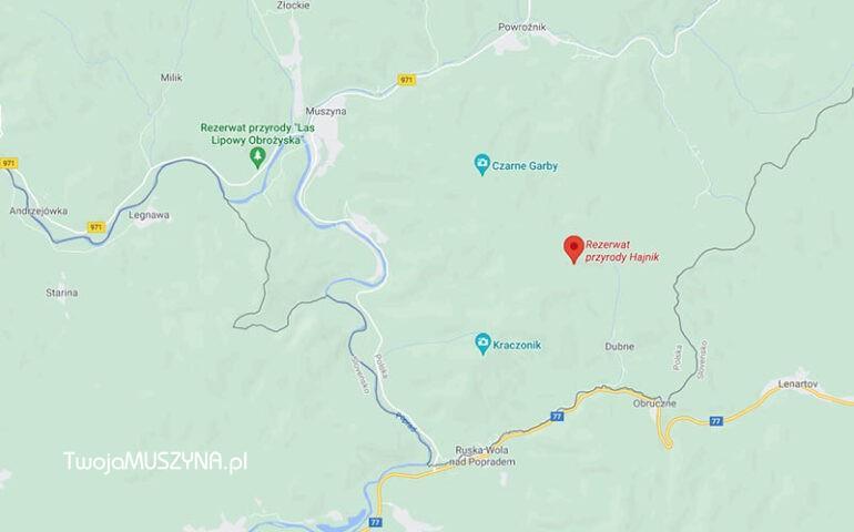 Rezerwat przyrody Hajnik