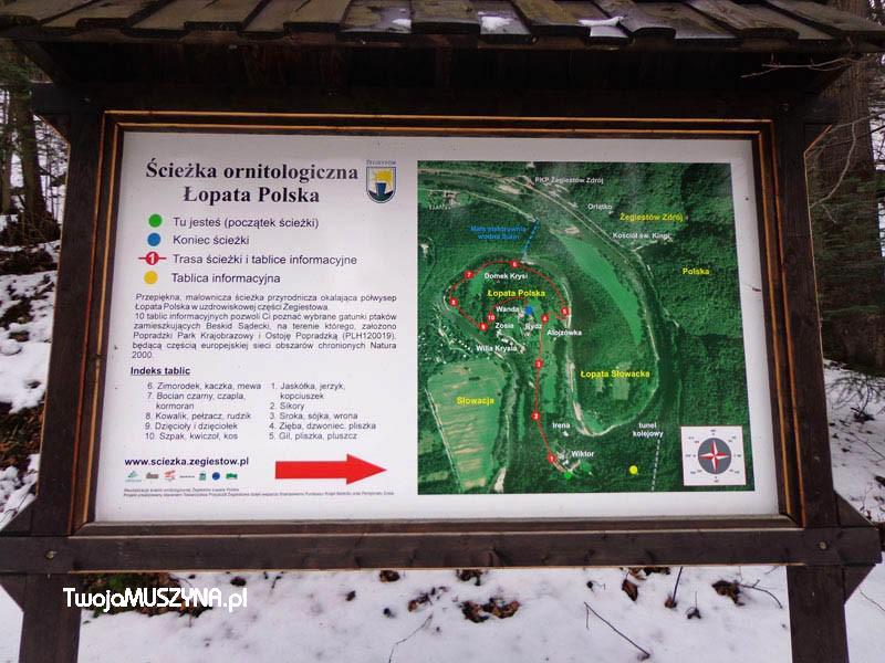 ścieżka orniologiczna Łopata Polska Żegiestów