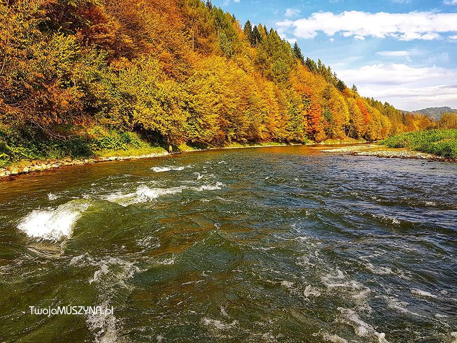 rzeka Poprad Muszyna okolice stacji PKP
