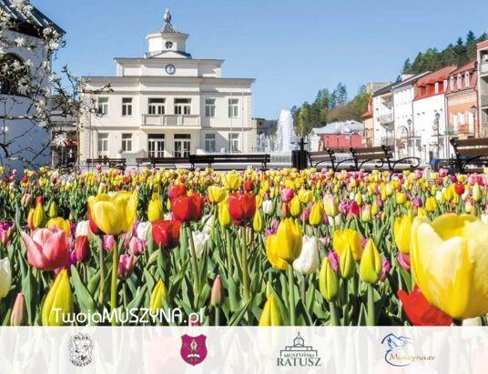 Jarmark Muszyński - otwarcie Ratusza - 11 czerwca 2021