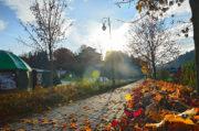 Jesienny spacer po Muszynie - 28 lutego 2015