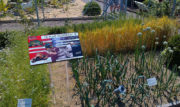 Biblické záhrady v Muszyne
