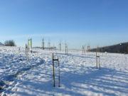 Ogrody sensoryczne w Muszynie - grudzień 2012
