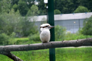 Strefa wypoczynkowo-rekreacyjna Park Zapopradzie - 07 lipca 2020
